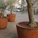 Cado Corten Steel Cylinder Planter - 1000 x 800